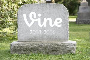vine-shut-down