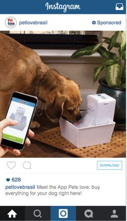 instagram-petlove