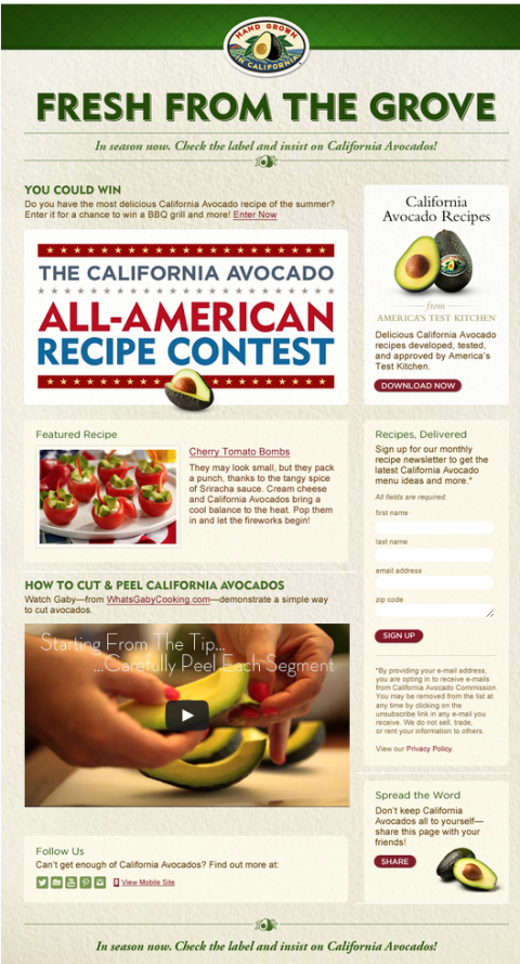 jb-california-avacado