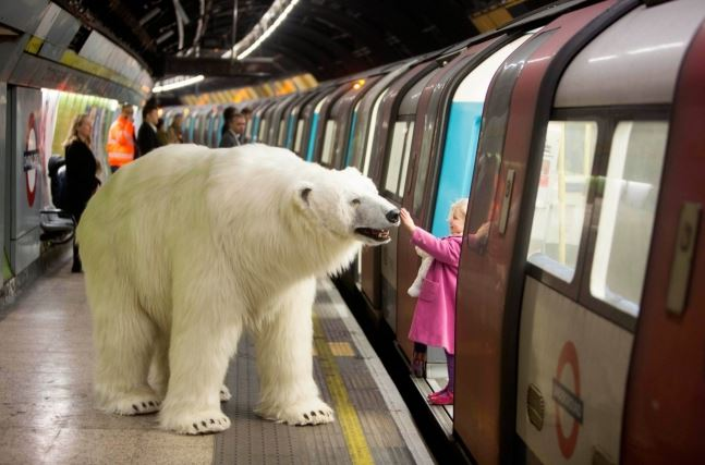 jegesmedve-metro